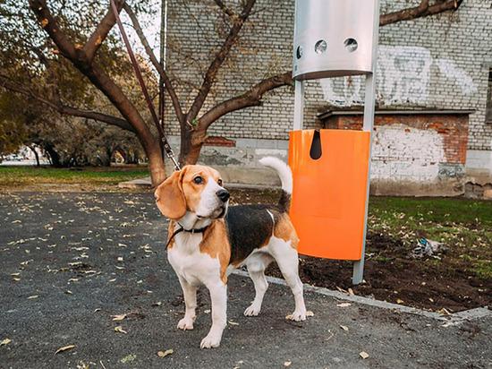 В Кудрово установят специальную урну для собачьих фекалий