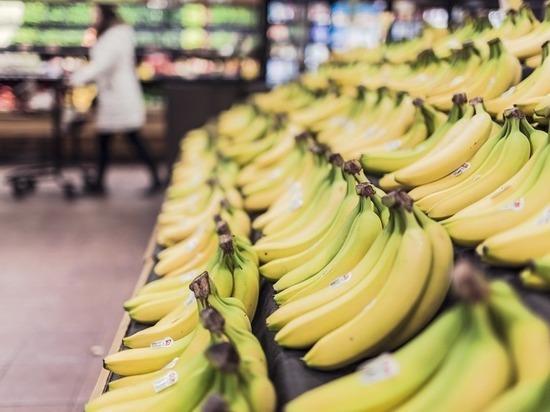 В распространении банановой болезни виновато глобальное потепление