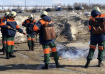 Ямальские спасатели отработали действия при тушении лесных пожаров