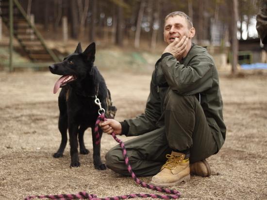 Иркутская область не готова выполнять новый закон о животных
