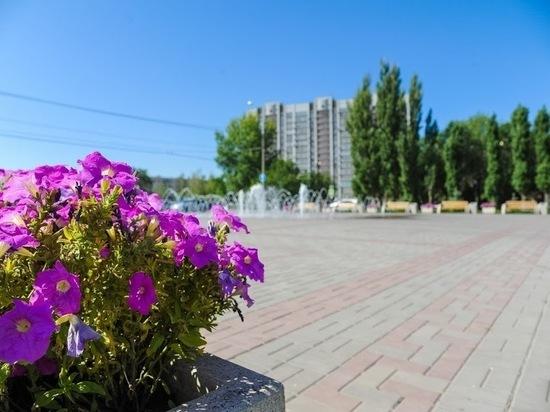Улица Клементины Черчилль появится в Дзержинском районе Волгограда
