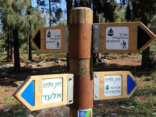 Экскурсии и мероприятия в честь 71-го Дня Независимости государства Израиль