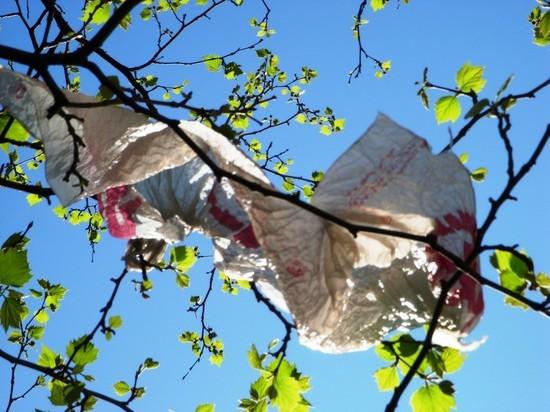 Мантуров призвал запретить пластиковые пакеты в России