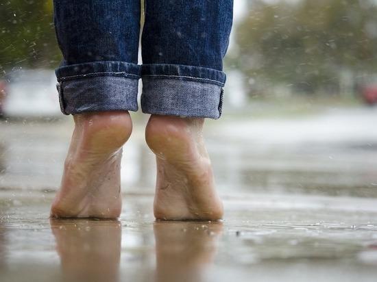 Волгоградцев предупредили 10 мая о дожде с грозой, порывистом ветре и до +28°С