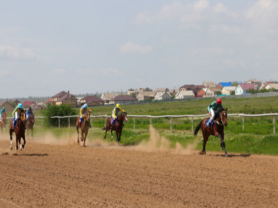 В Калмыкии победная «Нива» уехала в Кетченеры