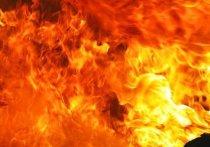 Два человека погибли на пожаре в Тверской области