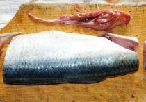 Экс-куратор рыбоводного завода на Байкале поделился рецептом ухи из селедки