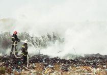 Под Багратионовском горел полигон ТБО