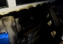 Пожары минувшей ночи: что сгорело в Тульской области
