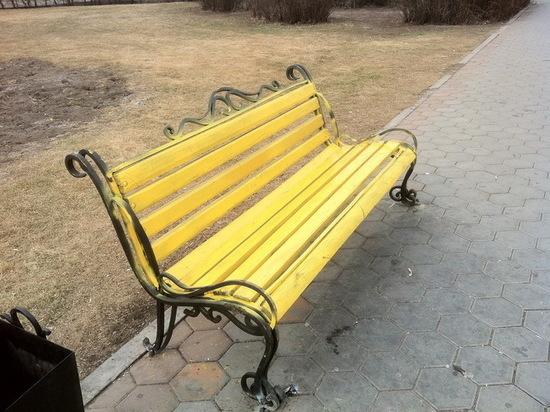 В Рыбинске участники праздника прилипли к свежеокрашенным скамейкам
