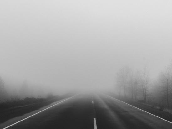 В Калининградской области из-за тумана на дорогах случилось два ДТП