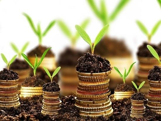 В Министерстве сельского хозяйства Калмыкии снова ошибочно дали субсидию