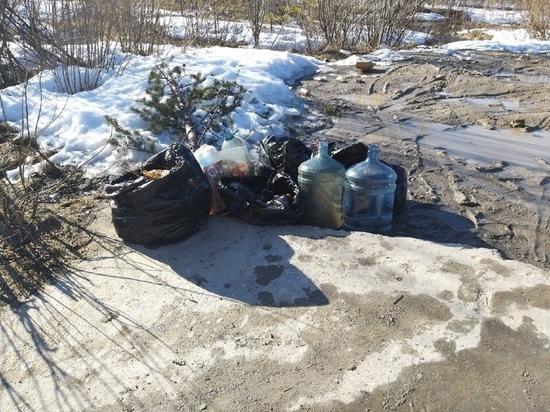 Жители Ноябрьска сами расчистили захламленный родник