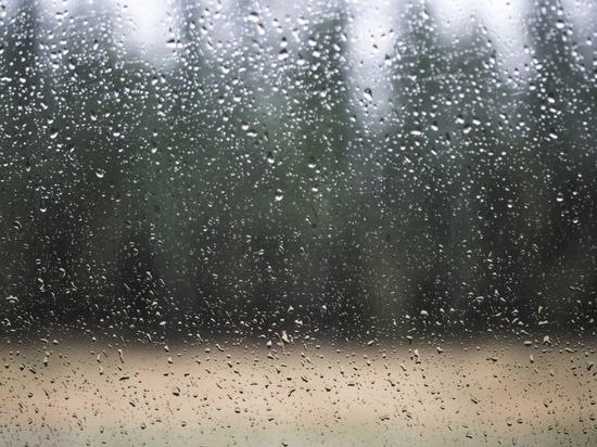 В Ульяновской области ожидается 34 градусов жары и дождь