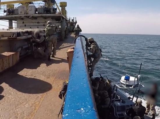 В Совфеде прокомментировали абордажные учения Украины в Черном море