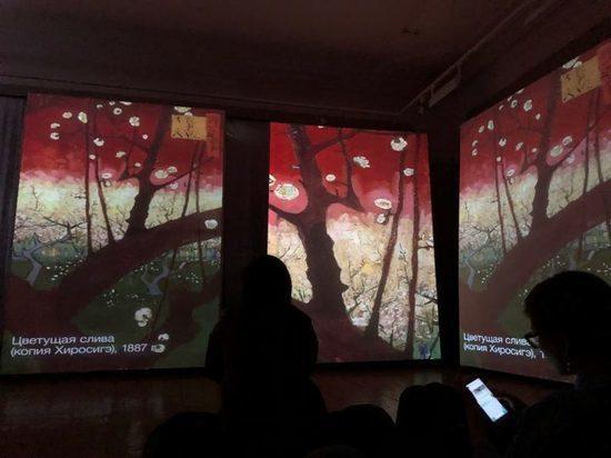 В Хабаровске открылась выставка «живых» картин .Фото