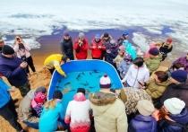 Силовики Бурятии вывезли с Байкала 20 тонн мусора