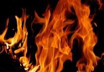 В Бурятии полыхает один лесной пожар