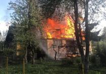 Кадры пламени: под Тулой сильнейший пожар тушили три десятка человек