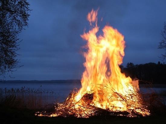 Майские праздники в Псковской области обошлись без крупных лесных пожаров