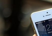 В Рязани у 14-летнего подростка неизвестный отнял на улице телефон