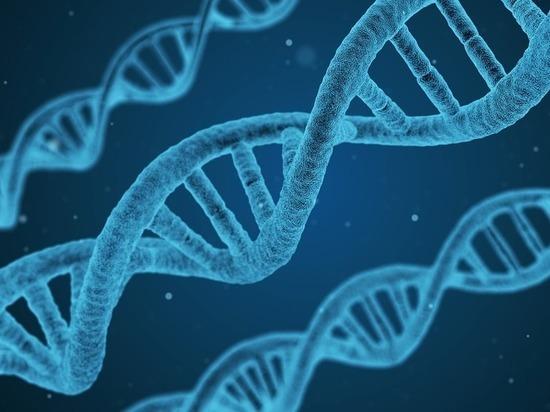 Генетики призвали «остановить эволюцию людей»