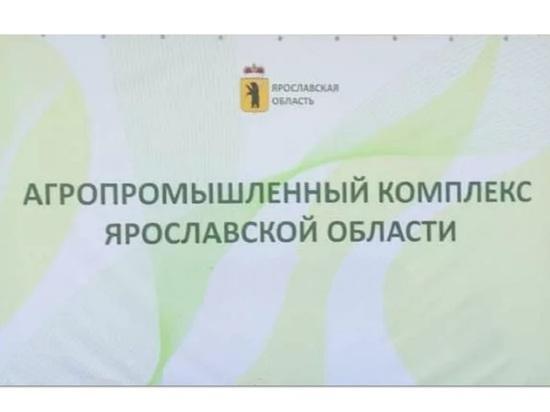 Уволился директор Департамента АПК правительства Ярославской области
