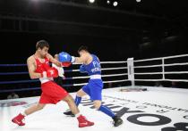 Сборная РФ заняла первое место в общекомандном зачете на турнире по боксу в Хабаровске