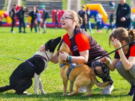 За праздничную атмосферу и спортивный настрой участников забега отвечали собаки из приюта «Поводог»