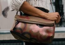 В магазине у великолучанки украли кошелёк