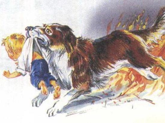 Дворовый пёс спас людей от пожара в Калининградской области