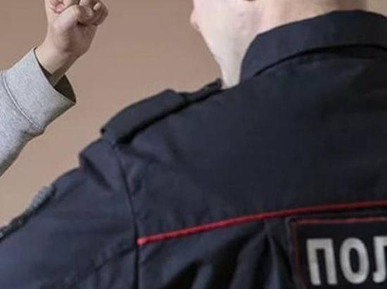 Житель калмыцкого поселка оскорбил полицейского