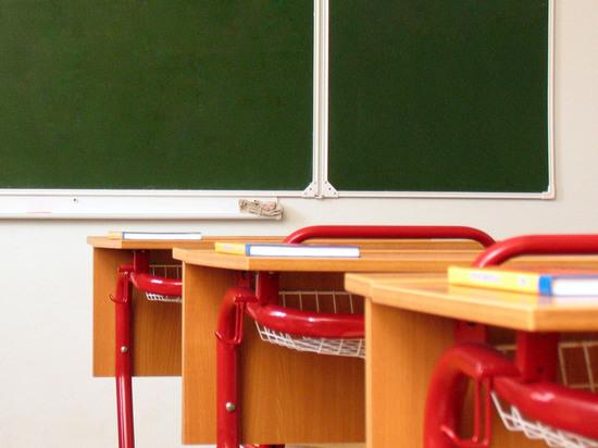 Учительница пожалела, что предков ее ученицы не сожгли фашисты
