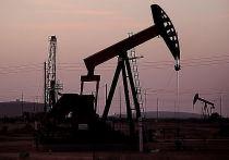 «Роснефть» подтвердила статус одной из самых эффективных компаний
