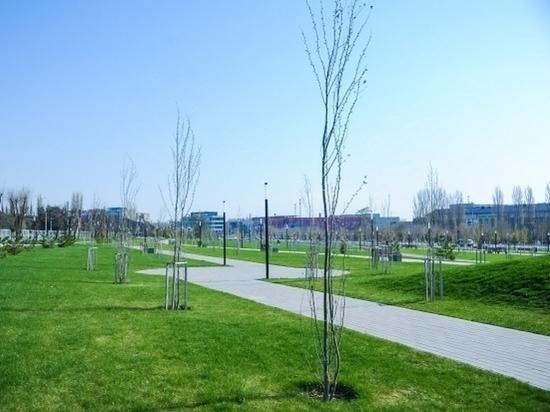 15 мая в Волгограде будет +28°С без дождей