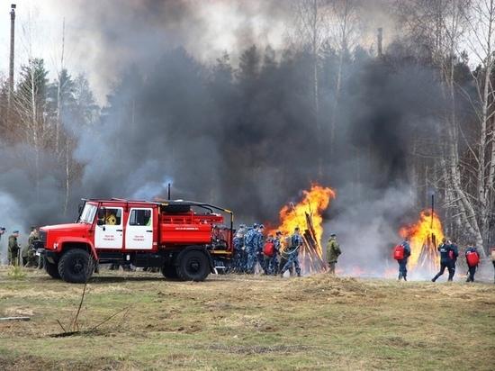 15 и 16 мая в Кировской области сохранится высокая опасность пожаров