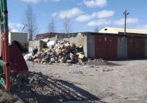 Ноябряне пожаловались на мусорные горы в «Тепловике»