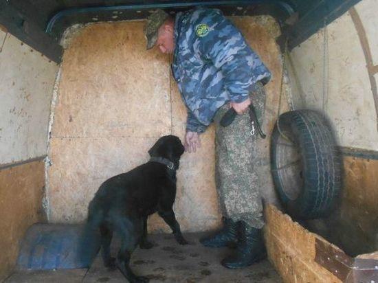 В Ростовской области через границу с Украиной попытались перевезти 20 тысяч сигарет