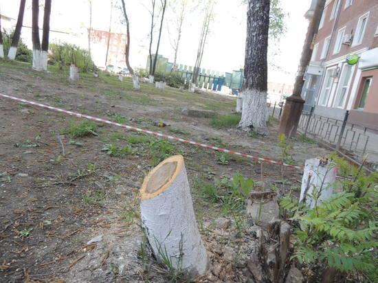 В Ревде возле Ленина, которого собираются снести, массово начали вырубать деревья
