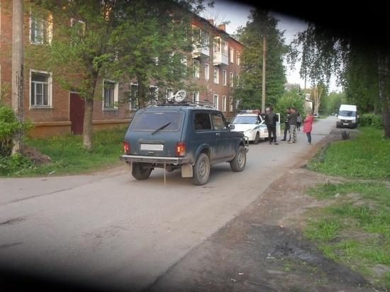 Под Тулой водитель «ВАЗ 21213» сбил невнимательного пешехода