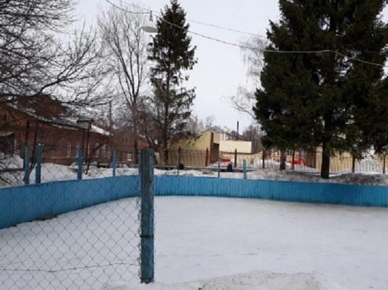 Нижегородцев призвали голосовать в конкурсе на строительство катка