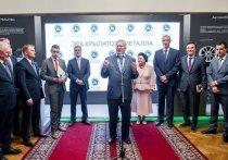 «У алюминия большие перспективы»: Госдума поддержит развитие отрасли
