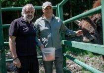 В КЧР откроют вольерный центр для животных кавказского высокогорья