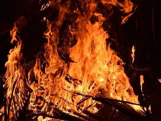 Пенсионер пострадал на пожаре в Псковском районе