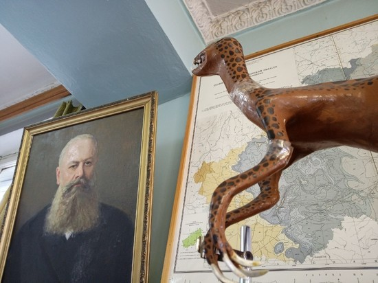 Болота и мамонты: в Твери работают уникальные музеи геологии и торфа