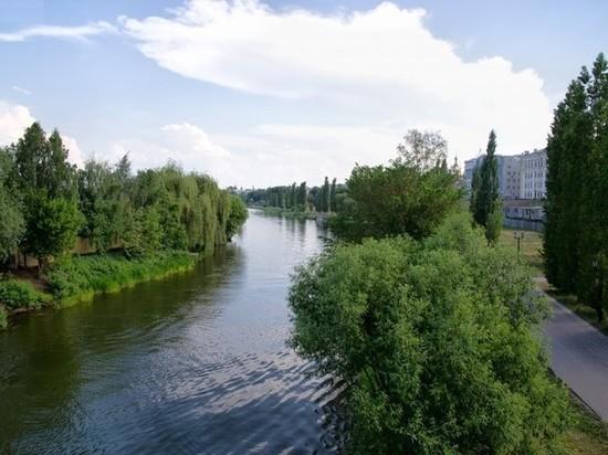 В Тамбовской области пройдёт экологическая реабилитация реки Цна
