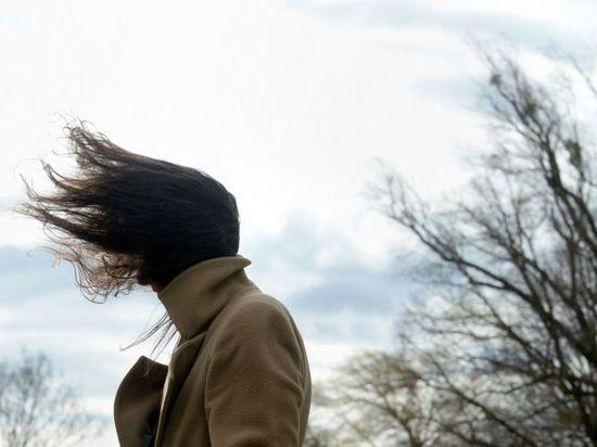МЧС предупреждает: на Чувашию идет гроза и сильный ветер