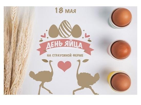 Всех желающих приглашают на агрофестиваль в Серпухов