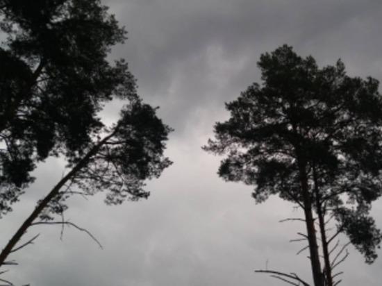 Четверг на Смоленщине будет прохладным, возможен дождь