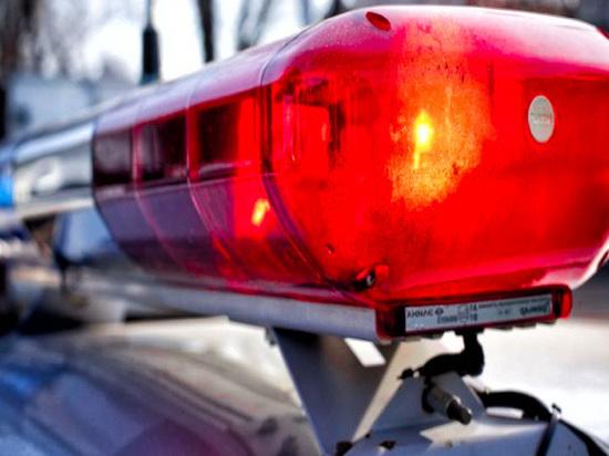 В Тверской области мужчина устроил ДТП, поджёг свой автомобиль и сбежал